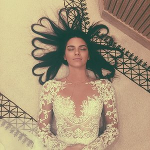 Kendall Jenner's Heart Hair Instagram Picture Copies