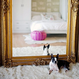 Chic Renter Hacks You Must Know