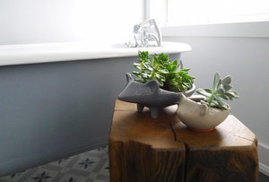 Vote for the Best Bath in the Remodelista Considered Design Awards: Amateur Category