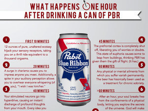 What Happens One Hour After Drinking A Can Of PBR