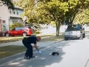 Michigan Cop Saves Baby Skunk Stuck in Yogurt Cup