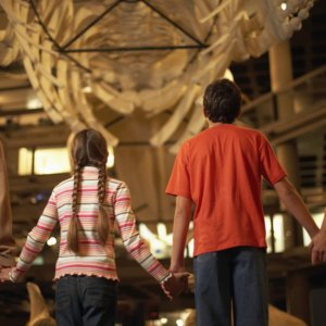 Get Free Museum Tickets This Fall