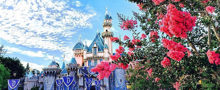 22 Signs You're Truly OBSESSED With Disneyland