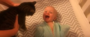 You Don't Love Your Pet as Much as This Baby Loves Her Cat