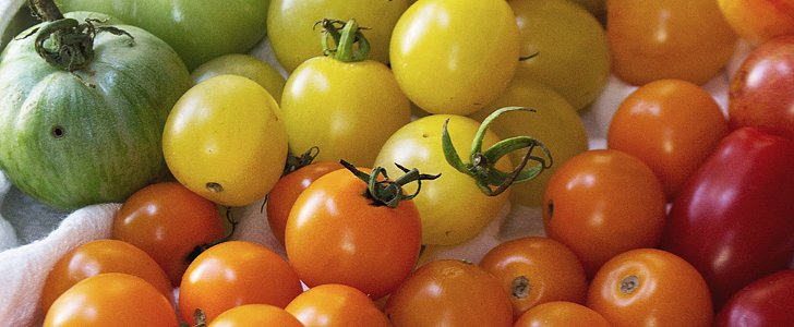 Get to Know All the Jaw-Dropping Tomato Types That Exist