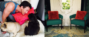 David Bromstad's Chic Miami Pad Is Upstaged Only by His 2 Adorable Dogs