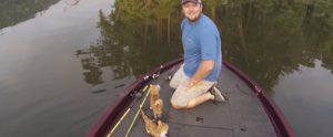 2 Cats Rescued From Alabama River by Good Samaritans