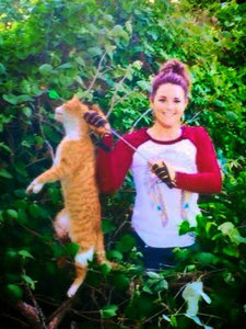 Vet Who Murdered Cat with Arrow May Lose License