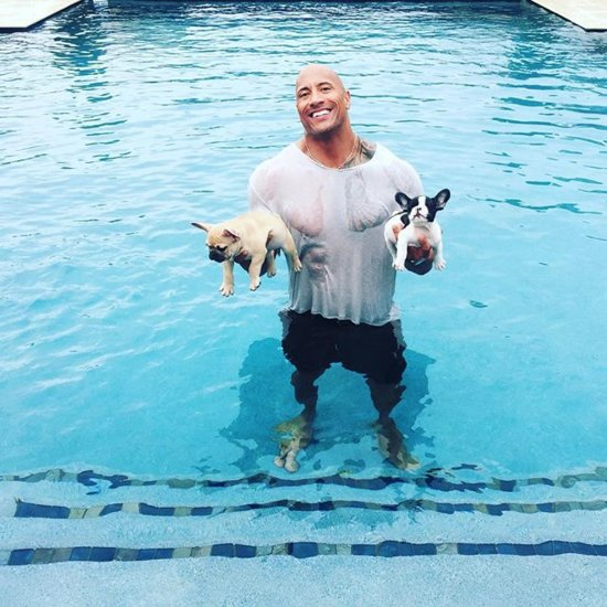 """Dwayne """"The Rock"""" Johnson Saves Puppies From Drowning"""