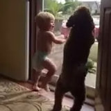 This Baby and Dog's Reaction to Seeing Their Dad Come Home Will Make Your Day