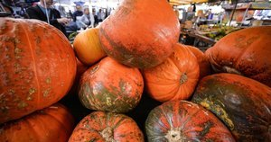 There Could Be A Canned Pumpkin Shortage Before Thanksgiving