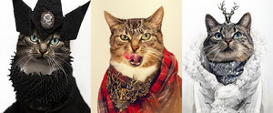 Believe It or Not, This Leukemic Cat Is a Total Fashion Icon