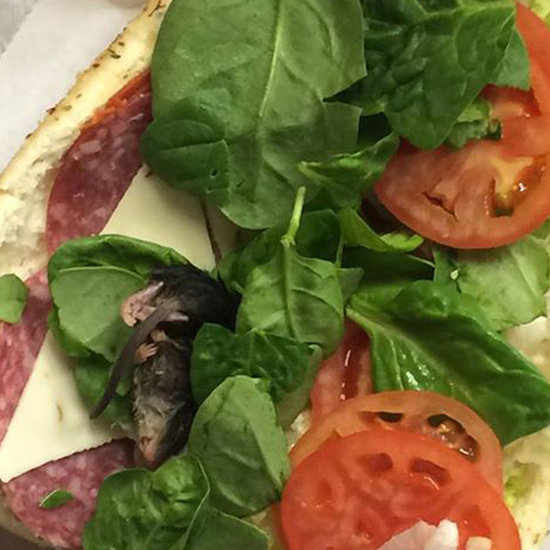 Dead Mouse Found in Subway Sandwich