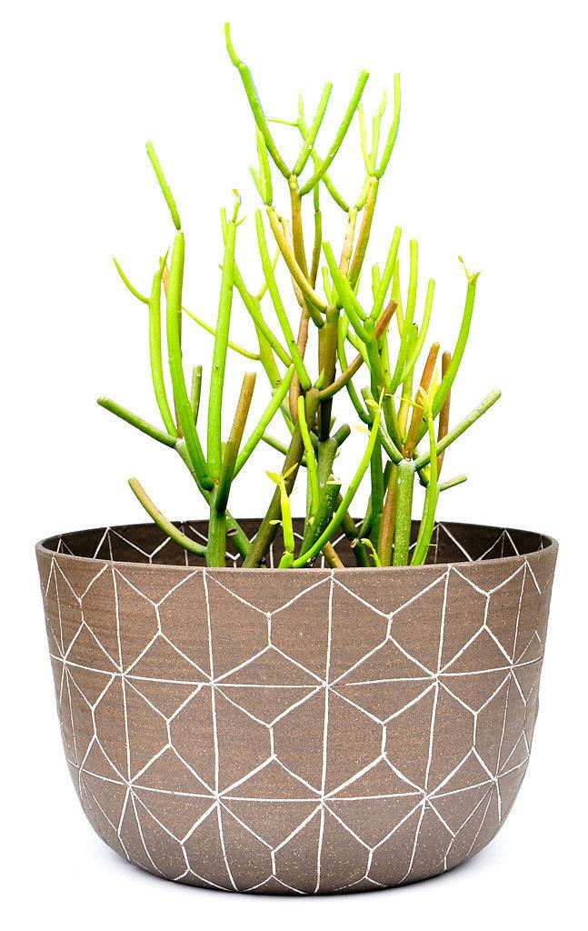 Unique Vases