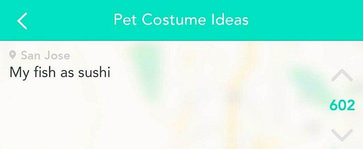 Yik Yak Users Drop Some Major Pet Costume Inspiration on Us