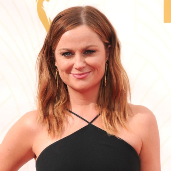 Amy Poehler Career Tips
