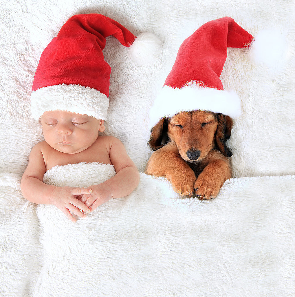 Adorable baby and puppy christmas picture ideas popsugar for Christmas pictures of baby animals
