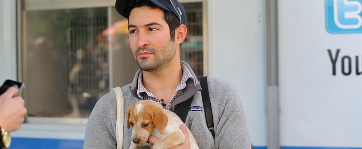 Meet the Man Who Has Photographed Thousands of Pups — The Dogist