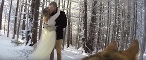 This Dog Filmed Her Owner's Snowy Wedding and It's Beautiful