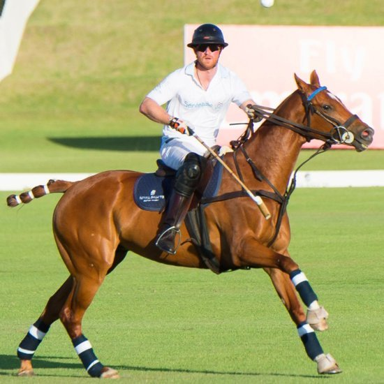 Prince Harry at Sentebale Royal Salute Polo Cup 2015