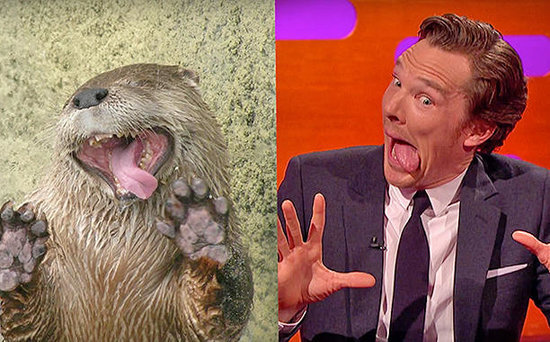 FROM EW: Benedict Cumberbatch Imitates Otters with Johnny Depp on The Graham Norton Show