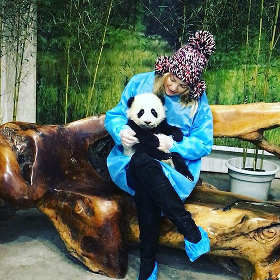 Watch Kate Hudson Fall in Love with a Baby Panda During Kung Fu Panda 3 Press Tour in China