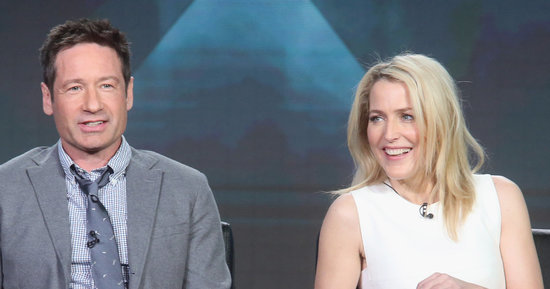 Gillian Anderson Offered Less Money Than David Duchovny To Star In The Same Damn Show