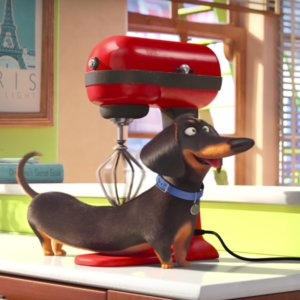The Secret Life of Pets Official Trailer