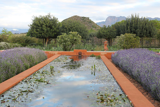 Garden Visit: Behind the Scenes at Babylonstoren