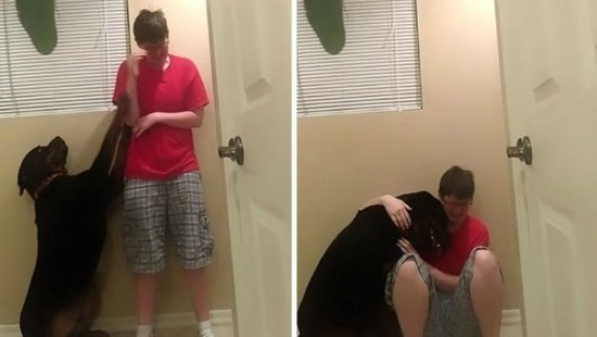 The Woman Who Went Viral For Her Dog Comforting Her During An Asperger's Meltdown Was Shot Dead By Police