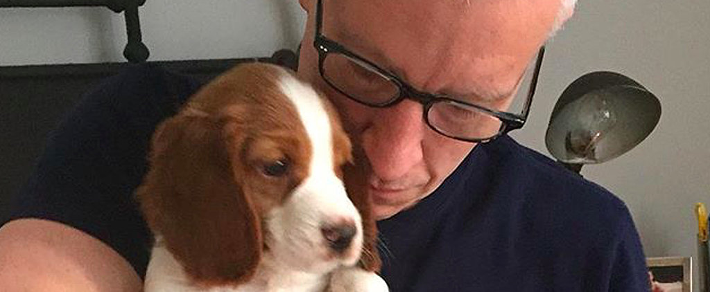 After Losing His Beloved Dog, Anderson Cooper Brings Home a Brand-New Puppy