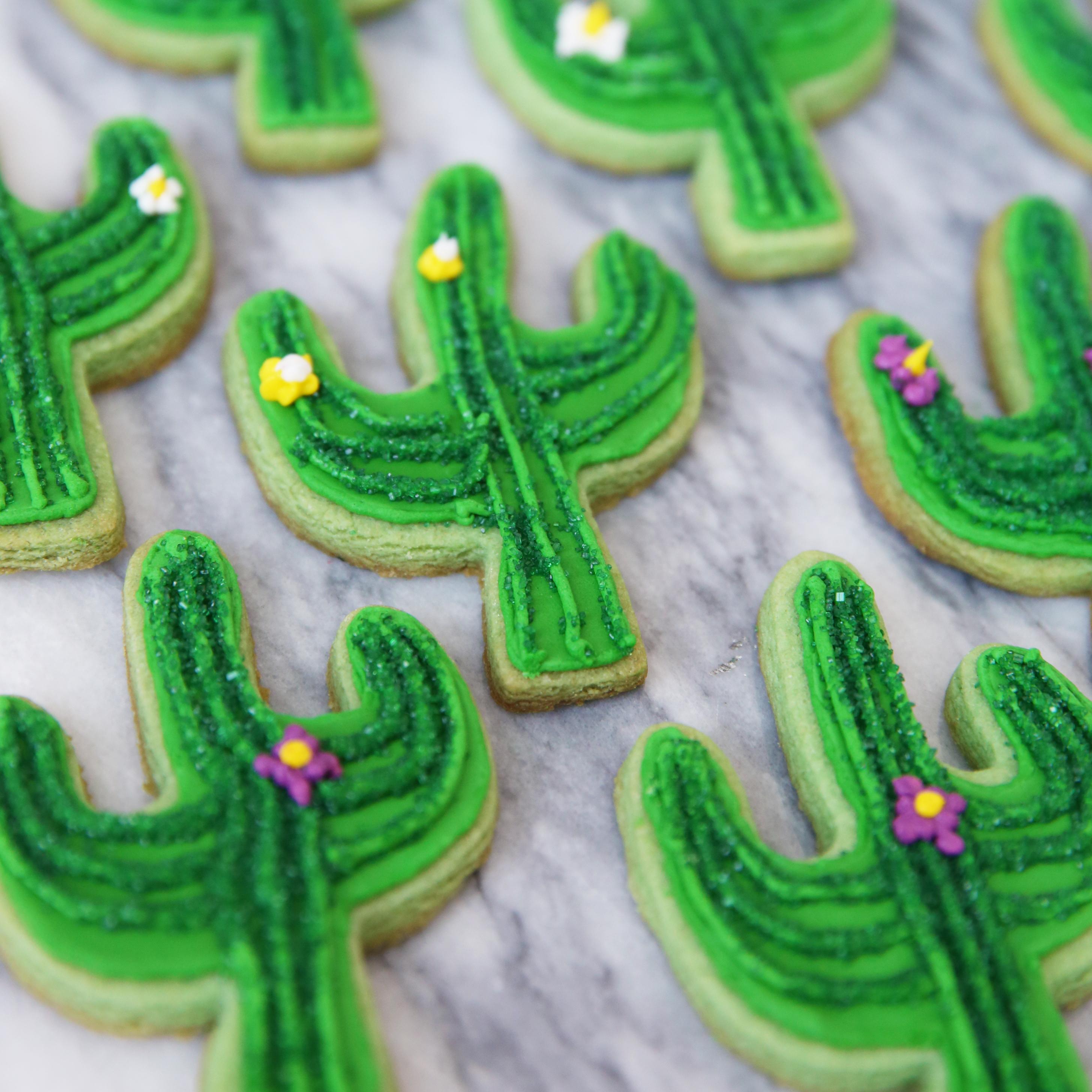 how to make cactus food