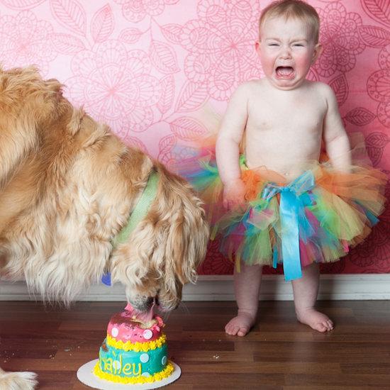 Funny Cake Smash Outtakes