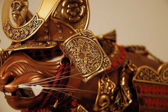 Obsessions: Armor for Cats