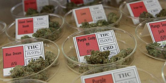 Feds Drop Case Against Influential Medical Marijuana Dispensary
