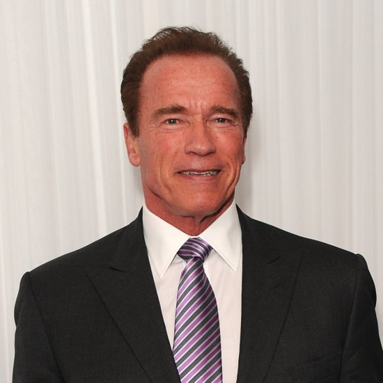Arnold Schwarzenegger Is Starring in Taran Killam's Directorial Debut