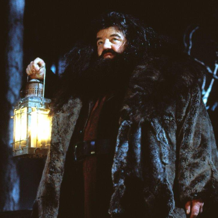 Scamander Australia  city photos gallery : Newt Scamander and Hagrid Theory | POPSUGAR Australia Tech