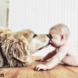 This Baby and His Pup Have Our Dream Relationship
