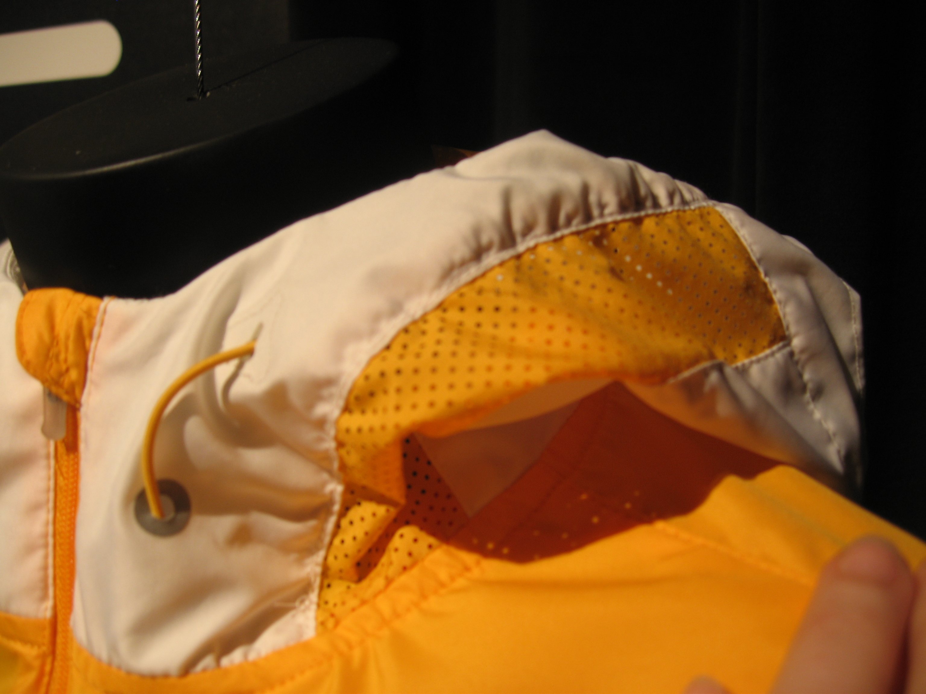 Hood Detail