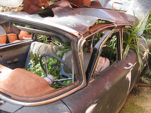 Cool Idea: A Car Turned Planter