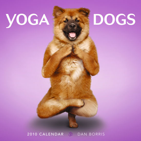 Sneak Peek: Yoga Dogs