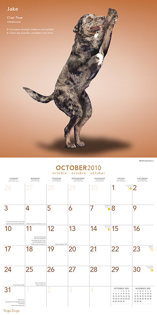 October —Chair Pose