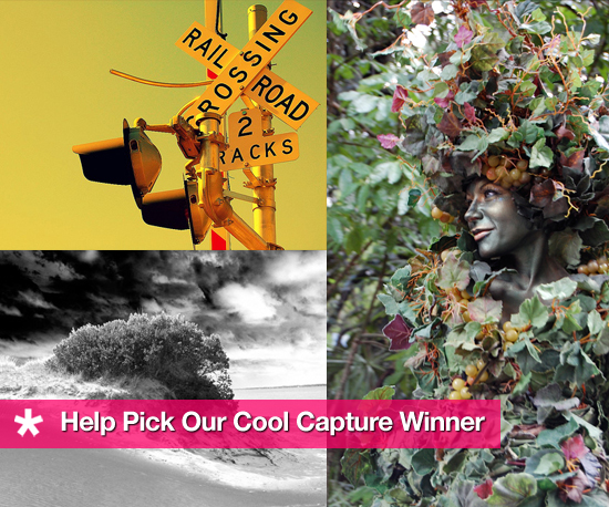 Help Pick Our Cool Capture Winner!