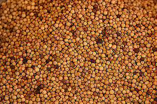 Burning Question: Why Does White Pepper Smell Unpleasant?