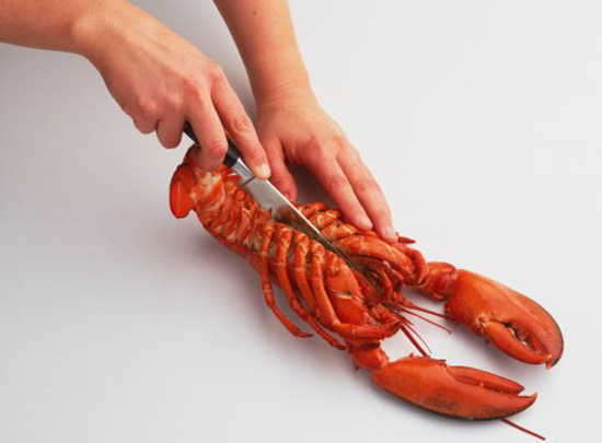 Poll: Do You Buy Live Seafood to Cook at Home?