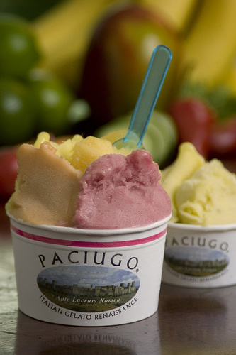 Would You Rather Eat Gelato or Ice Cream?