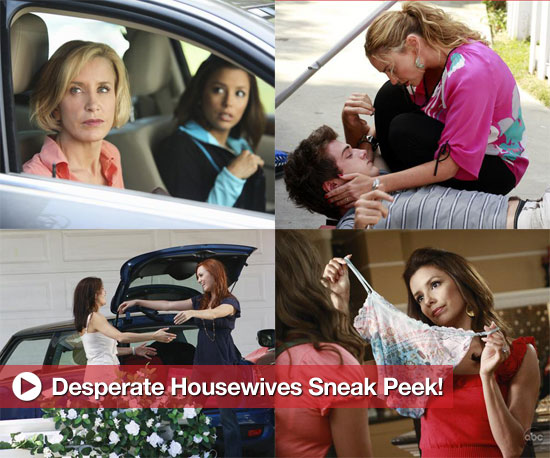 desperate housewives season 7 episode 5 sockshare