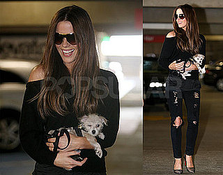 Photos of Kate Beckinsale in LA With Her Puppy
