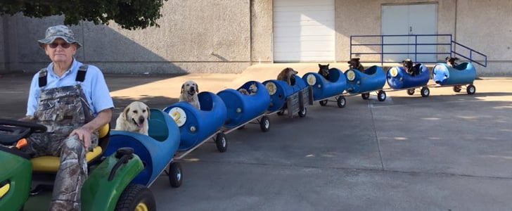 This Train For Dogs Is the Coolest Thing We've Seen All Week