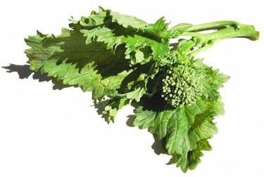Broccoli Rabe Demystified